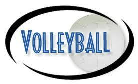 Large_volleyball_net